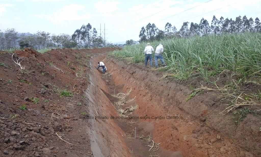 Unen esfuerzos en la conservacion de suelos