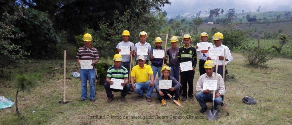 Colaboran en la conservacion de bosques