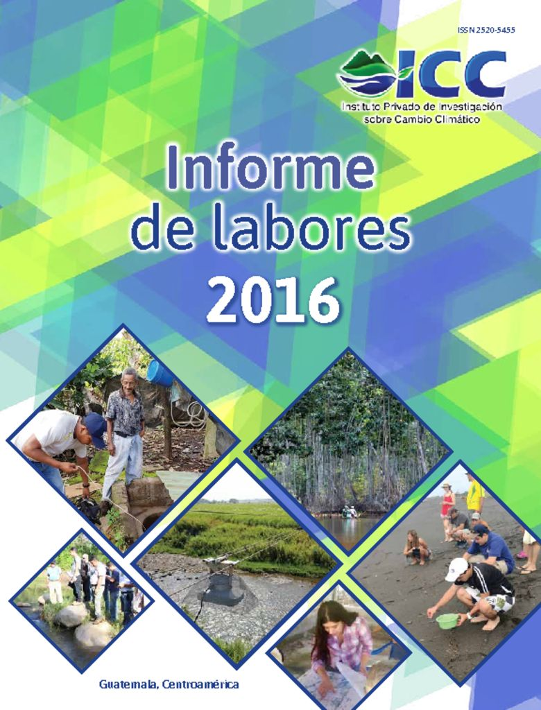 thumbnail of Inter-ICC-Informe-Laboral-2016-BR