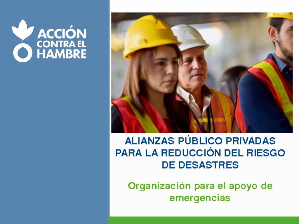 thumbnail of 12-Alianzas-Público_Privado