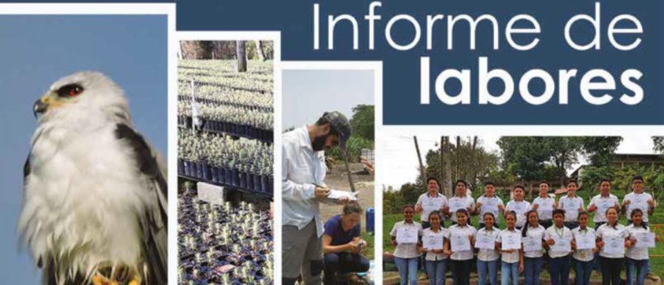 Informe de labores ICC 2018 BR-1